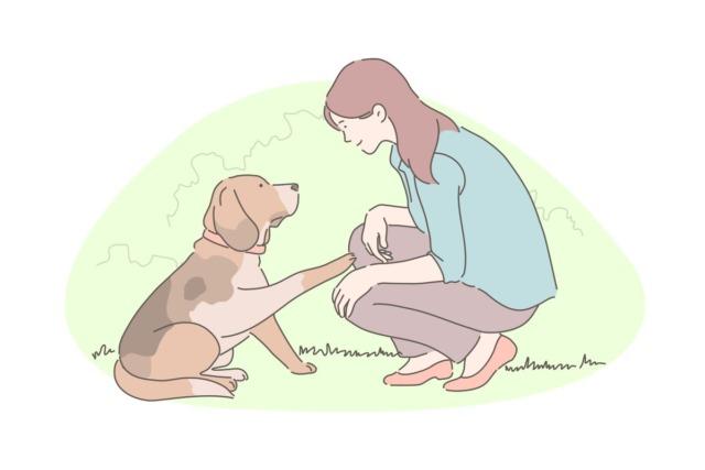ビーグル犬と女性のイラスト